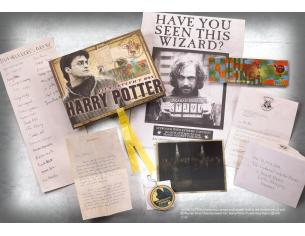 Harry Potter Box Da Collezione Repliche Artefact Noble Collection