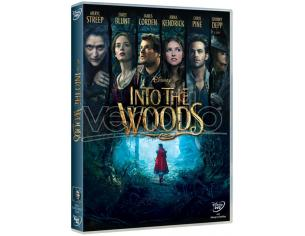 INTO THE WOODS FANTASY - DVD