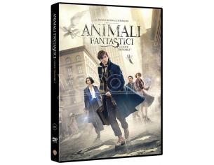 ANIMALI FANTASTICI E DOVE TROVARLI FANTASY - DVD