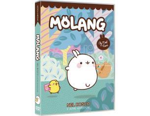 MOLANG - NEL BOSCO ANIMAZIONE DVD