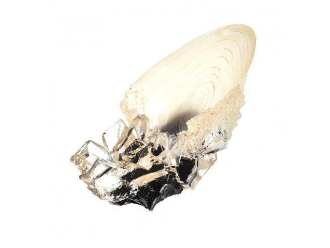 Coppa di Cristallo Replica Harry Potter 18 cm Noble Collection