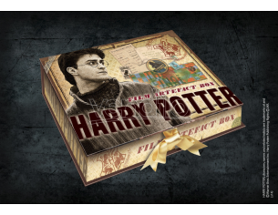 Box da Collezione Repliche Artefact Harry Potter Noble Collection