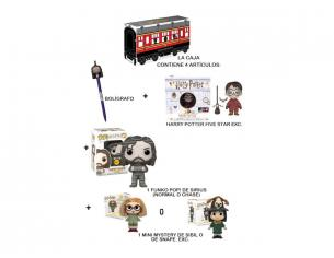 Funko Harry Potter Hogwarts Express Box 2 Personaggi uno a sorpresa 1 Chase
