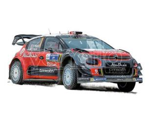 Norev NV310608 CITROEN C3 WRC RALLY DU MEXIQUE 2017 1:64 Modellino