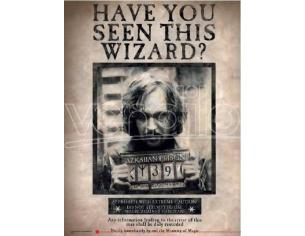 SD TOYS HP HAVE YOU SEEN SIRIUS GLASS POSTER POSTER