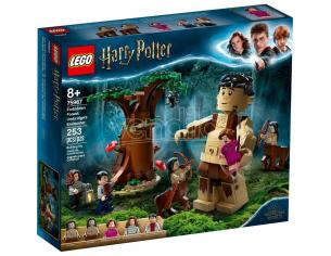LEGO HARRY POTTER 75967 - LA FORESTA PROIBITA: L'INCONTRO CON LA UMBRIDGE