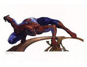 COSMIC ART S.BIANCHI -SPIDERMAN- LYTHO PRINTED ART