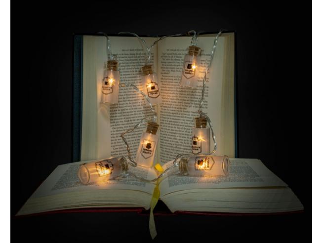 Harry Potter Catena Luci LED in Bottigliette di Vetro 1,65 m Wizarding World