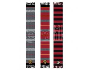 Harry Potter assorted scarf Warner Bros.