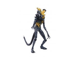Alien Warrior Headshot Px 1/18 Af Action Figura Hiya Toys