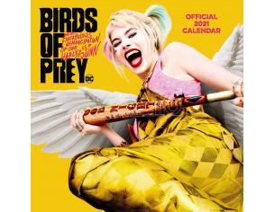 Birds Of Prey Calendar 2021 *English Version* Danilo