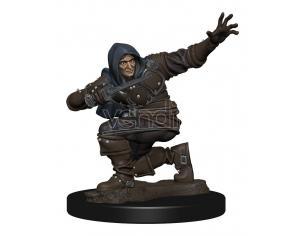 Pathfinder Battles Premium Miniature Pre-painted Human Rogue Male Case (6) Wizbambino