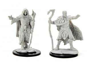 D&d Nolzur Mum Human Male Druid 3 Miniature E Modellismo Wizbambino