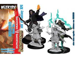 Pathfinder Dcum Elf Male Sorcerer 2 Miniature E Modellismo Wizbambino